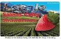 Locale Salinas Valley Strawberries (Pallet)