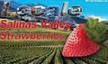 16 oz. Salinas Valley Strawberries