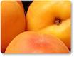 Lucich-Santos Farms, Blossom Hill Apricots