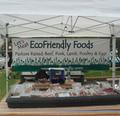 Eco Friendly Farm