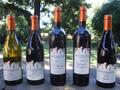 Arger-Martucci Vineyards