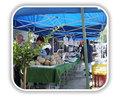La Jolla UCSD Farmers Market