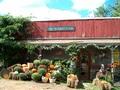 The Warren Farm