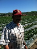 El Zenzontle Organic Farm