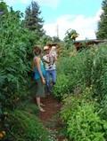 Sacred Paths Farm